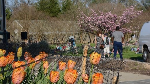 An Octopuss's Garden – Rawlings Conservatory & Botanical Gardens